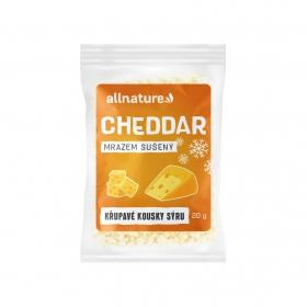 Allnature Cheddar sušený mrazem 20 g